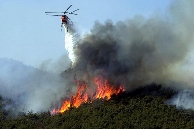 (산림청제공)+산불진화헬기+산불진화사진.jpg